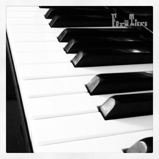 klavier_12von12_formtiere