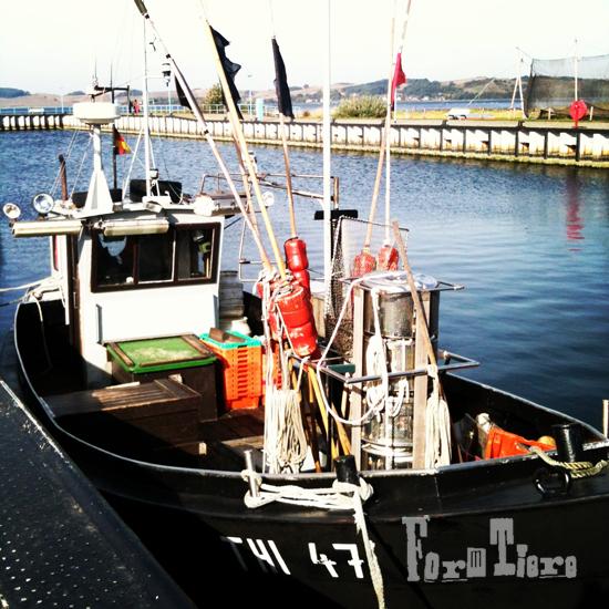 fischerboot_coffeemorning3_formtiere