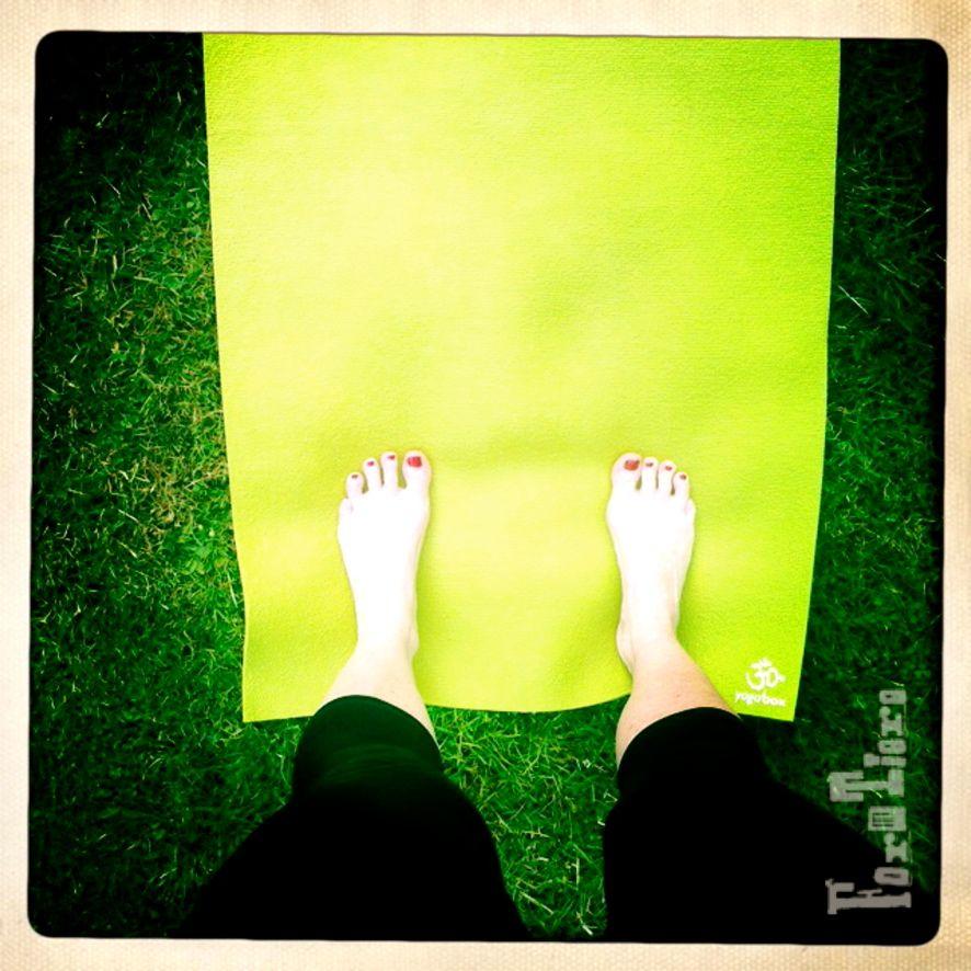 Yogamorgen_formtiere