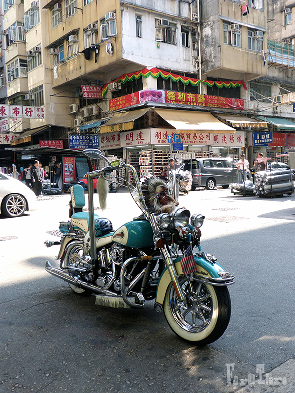 motorad_hongkong_formtiere